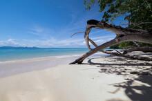 Beautiful Beach With Blue Wate...