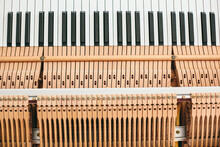 Mechanism Of A Piano Keyboard