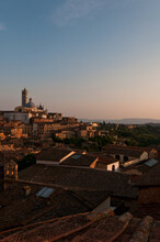 Siena's Roofs At The Sunset