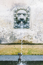 Lion Fountain In Wales