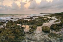 Rocky Shore In Bahia Honda State Park