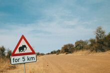 Yield For Elephants Sign Post