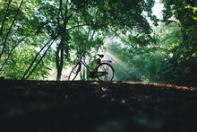 Silhouette Of A Bike Parked In A Forest With Sun Beaning Through.
