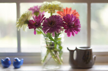 Zinnias In A Glass Vase In A Kitchen Window