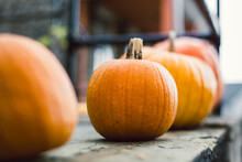 A Row Of Pumpkins Sit On A City Porch.