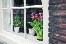 Tulips Flowers Pot On The Windowsill Of A Dutch House