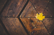 Yellow Leaf On Table