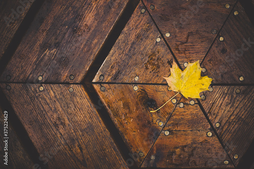 yellow leaf on table - 375224629