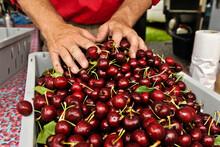 Farmer's Cherries