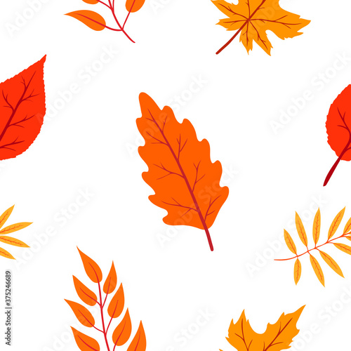 Foto autumn seamless pattern on white background