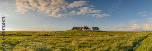 Fotografie, Obraz Picturesque village and unique natural landscape of the North Sea Coast on small island of the coast hallig at North Frisia, Schleswig-Holstein, Germany