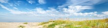 Panoramic View Of The Sandy Baltic Sea Shore On A Sunny Summer Day. Sand Dunes, Green Grass And Plants Close-up. Clear Blue Sky With Cirrus Clouds. Idyllic Seascape. Travel Destinations, Vacations