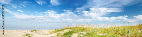 Fotografie, Obraz Panoramic view of the sandy Baltic sea shore on a sunny summer day