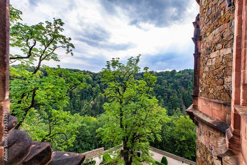Zamek Wałbrzych widok z okna pałac zabytek las dolny śląsk - 375335295