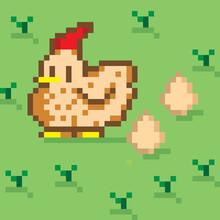 Pixel Chicken Hen 8 Bit - Isol...