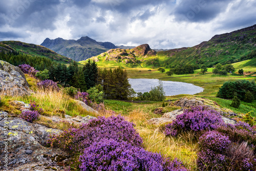 The view of Blea Tarn in the Lake District with heather in bloom. Fotobehang