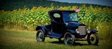 Vintage Car In A Sunflower Field