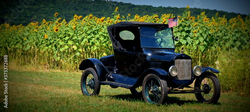 vintage car in a sunflower field Canvas Print