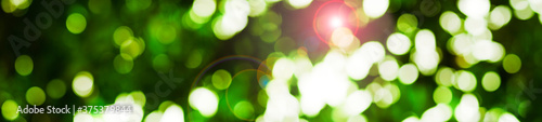 Obraz abstract green background with bokeh - fototapety do salonu