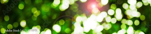 Fényképezés abstract green background with bokeh
