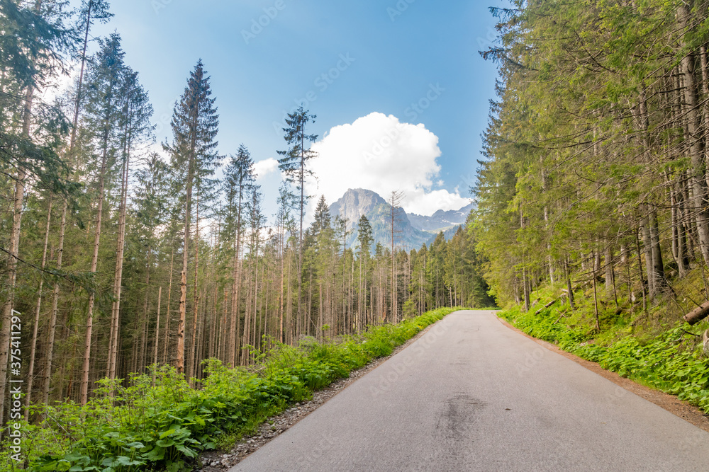 Road to the Morskie Oko, or Eye of the Sea lake in Zakopane, Poland.