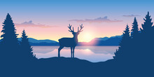 Reindeer By The Lake At Sunris...