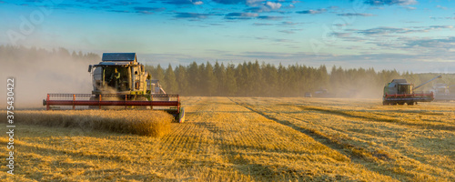 Papel de parede Banner combine harvester on a wheat field with blue sky