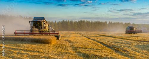 Banner combine harvester on a wheat field with blue sky Billede på lærred