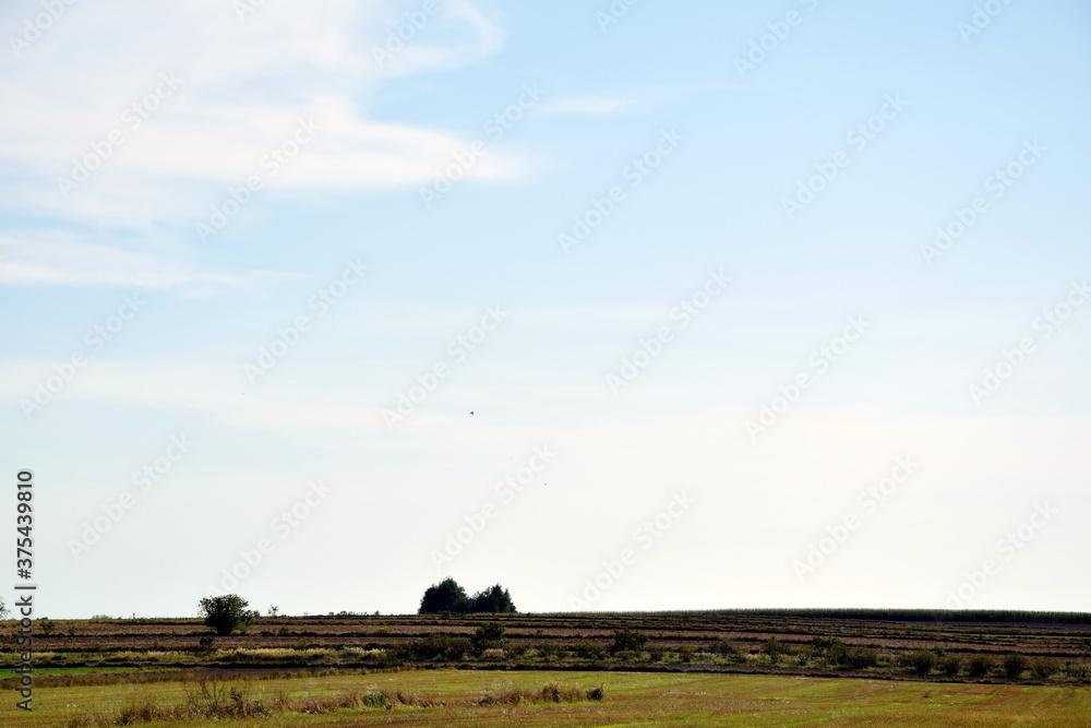 Fototapeta piękny krajobraz złożony głównie z nieba oraz z pola w lecie