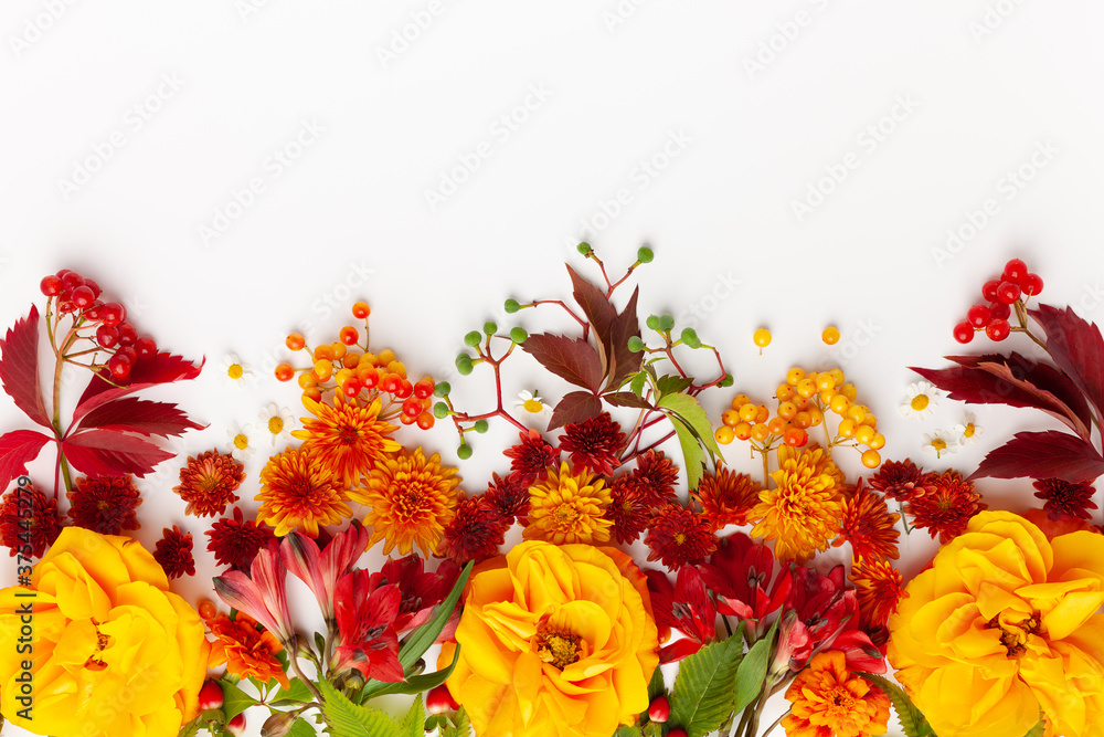 Fototapeta Autumn composition with flowers, leaves and berries on white background. Flat lay, copy space.