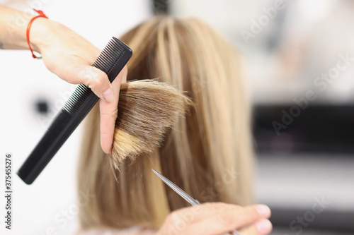 Carta da parati Hairdresser holds scissors and comb in his hand and cuts the ends of hair