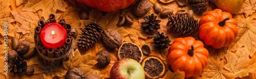 Fotografia burning candle with pumpkins and autumnal decoration on golden foliage, panorami