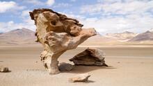 """Árbol De Piedra (""""stone Tree""""..."""