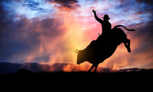 Bull Rider Silhouette At Sunset