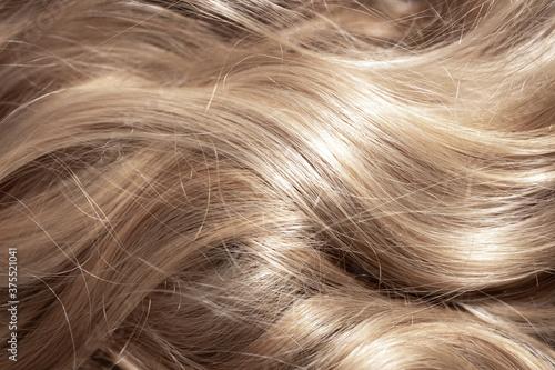 Fotografering Background hair light brown closeup