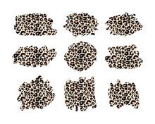 Hand Drawn Vector Leopard Patt...