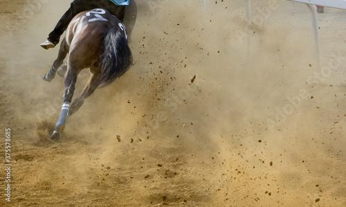 Fototapeta Cavalli al galoppo al Palio di Asti