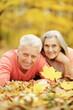 canvas print picture Happy senior couple posing on autumn leaves
