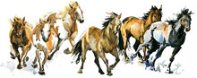Running Horses Watercolor Banner Illustration