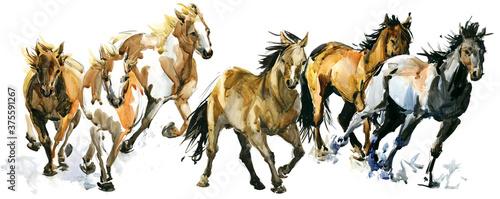 Fotografie, Obraz running horses watercolor banner illustration