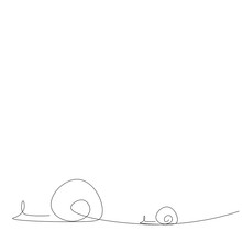 Snail Animal Line Drawing On W...