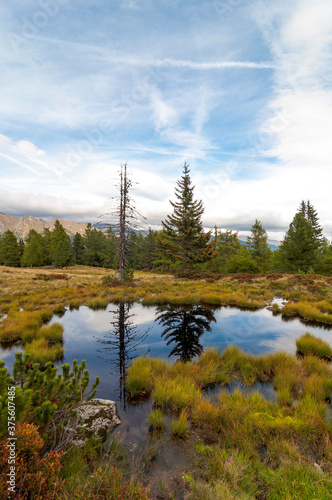 Fototapety, obrazy: The sky and trees are reflecting in a small raised bog lake on the Moserkopf moutain, Faningberg im Lungau. Autumn mood, the sky is cloudy.