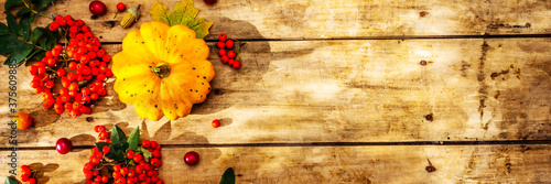 Fresh pumpkins, cherry plums, acorns and ripe rowan berries Slika na platnu