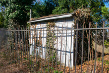 An Old Abandoned Shed In A Suburban Back Yard