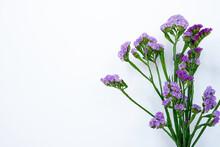 Statice Flower On White Background.