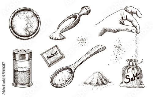 Collection of hand drawn sea salt Wallpaper Mural