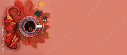 Fotografie, Obraz Autumn composition flat lay, seasonal background with maple leaves, umbrella and tea, place for text