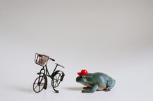 Tiny Tree Frog Doing A Pizza Delivery With Bike