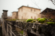 Covered In Moss Ancient Concrete Wall In Italian Village