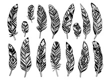 Set Feather Abstract Isolated ...